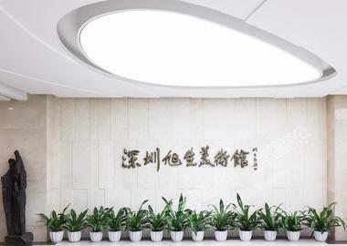 深圳旭生美术馆