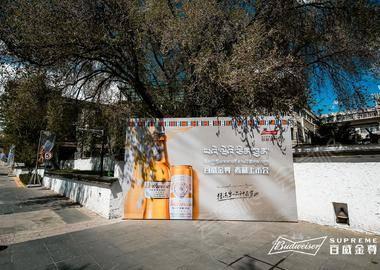 百威金尊西藏上市会