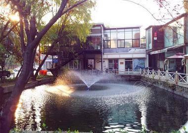 杭州有树咖啡