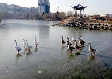 北京国学山庄