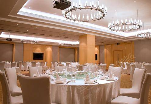 宴会厅B厅