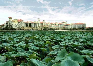 安徽芜湖碧桂园玛丽蒂姆酒店