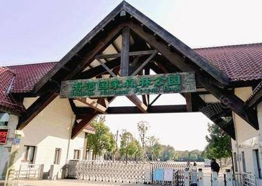 上海海湾国家森林公园