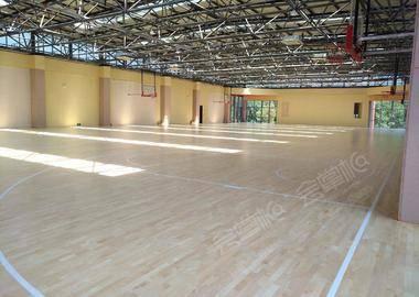 篮球体育场