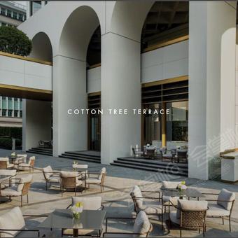Cotton Tree Terrace